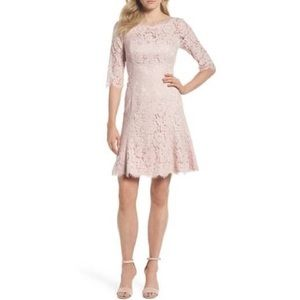 NWT Eliza J Lace Fit & Flare Cocktail Dress